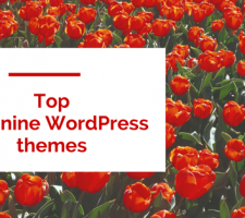 Feminie WordPress Theme1 (1)