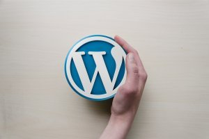 SEO for Wordpress The Beginner's Guide (for 2018)