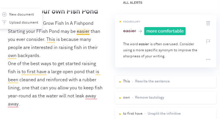 Grammarly Automatic Suggestions