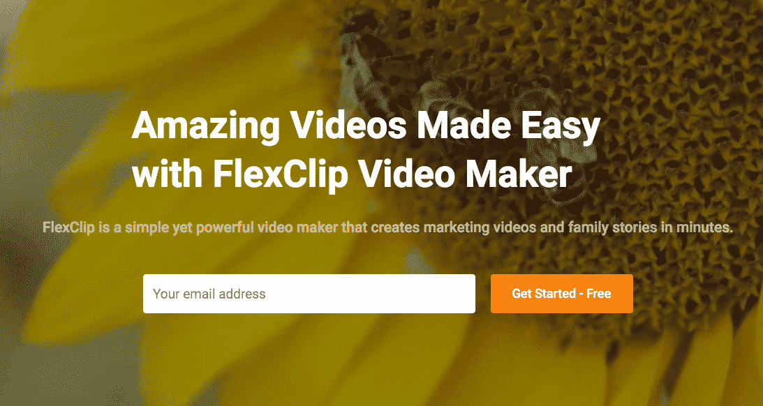 FlexClip  Video Editing Software