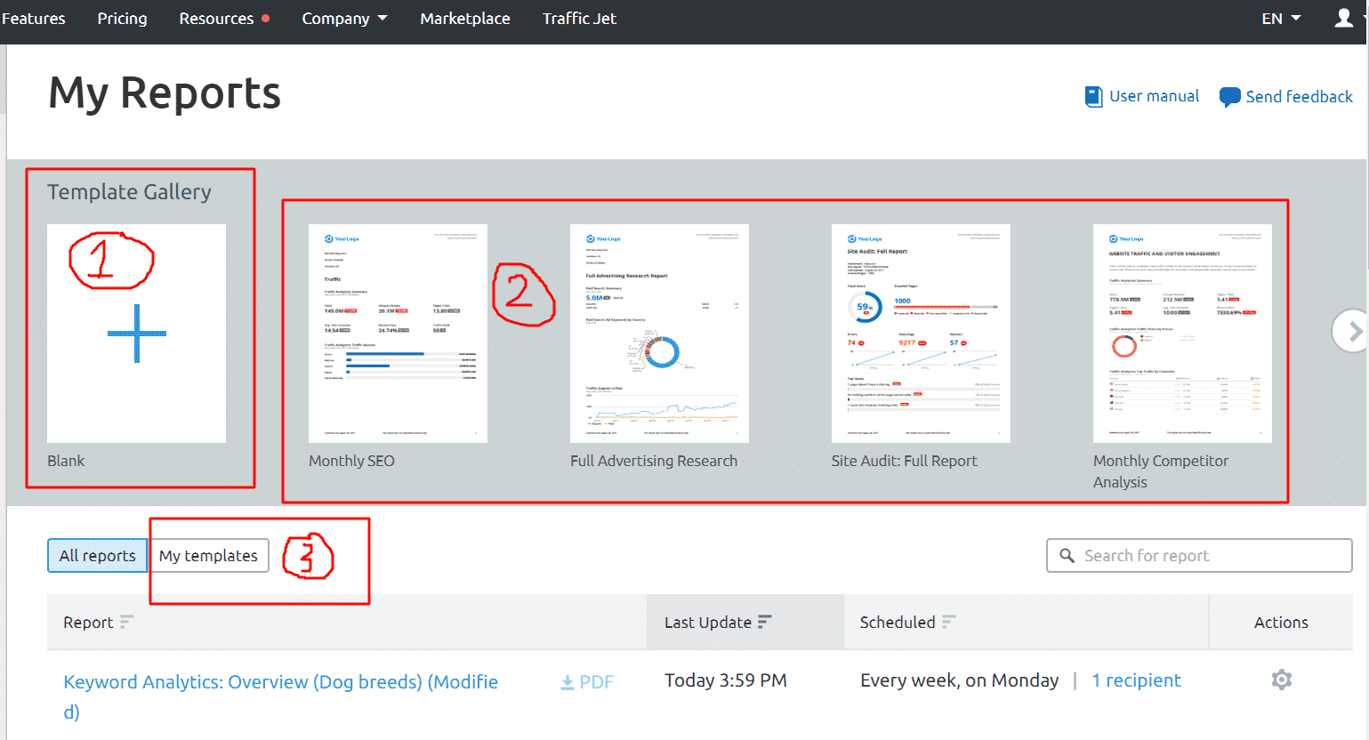 Semrush Reporting Features