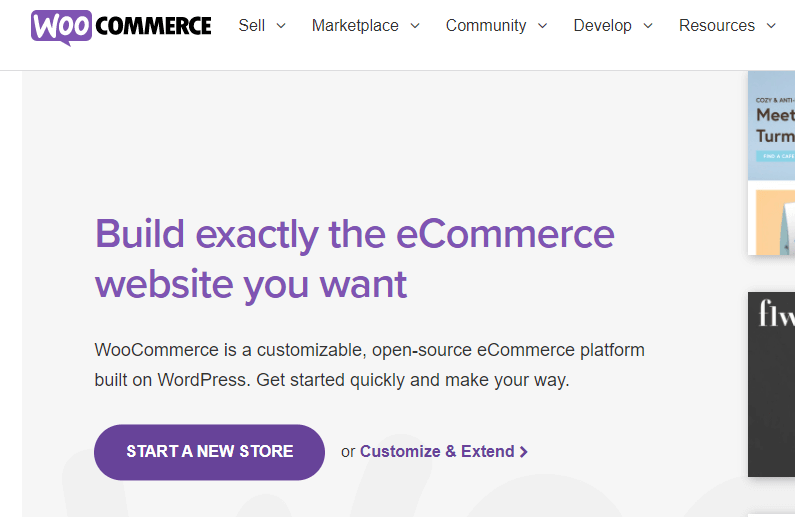 woocommerce for dropshipping (1)